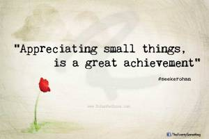 appreciate-small-things-great-achievement-seekerohan-rohanrathore.com-The-Twenty-Something-quote